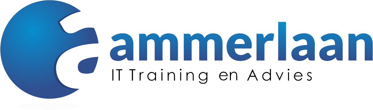 Ammerlaan IT Training en Advies  logo
