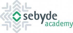 Sebyde Academy logo